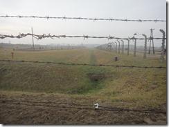 Fence, Auschwitz II-Birkenau, Poland