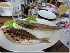 Hake and gilt-head bream, Ribice i Tri Točkice, Zagreb, Croatia
